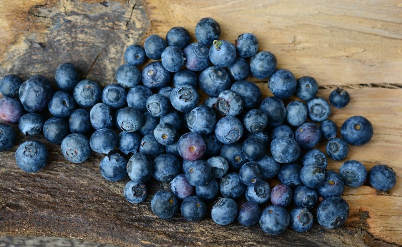 https://www.martermuehle.de/media/image/b3/47/b3/blueberries-2270379_960_720.jpg