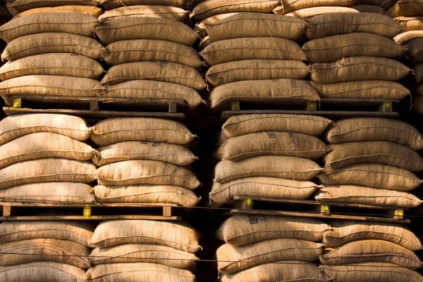 BIO-Kaffee-oder-Industrie-Kaffee