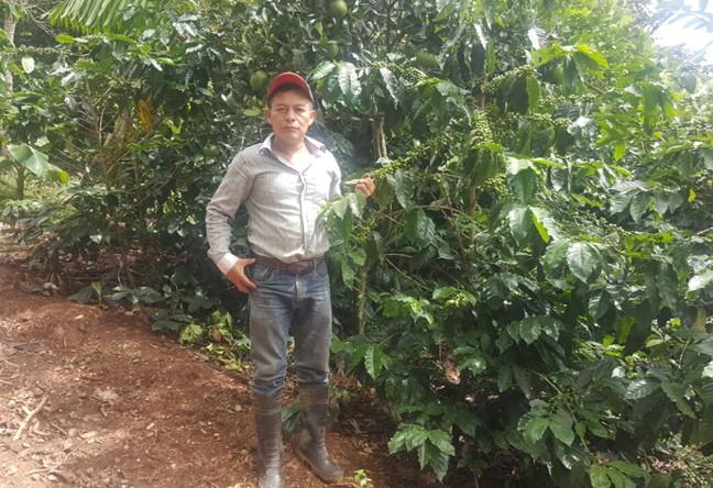 https://www.martermuehle.de/media/image/e6/35/f1/Don-Gregorio-KaffeebauermJUZrM0825kLK.jpg