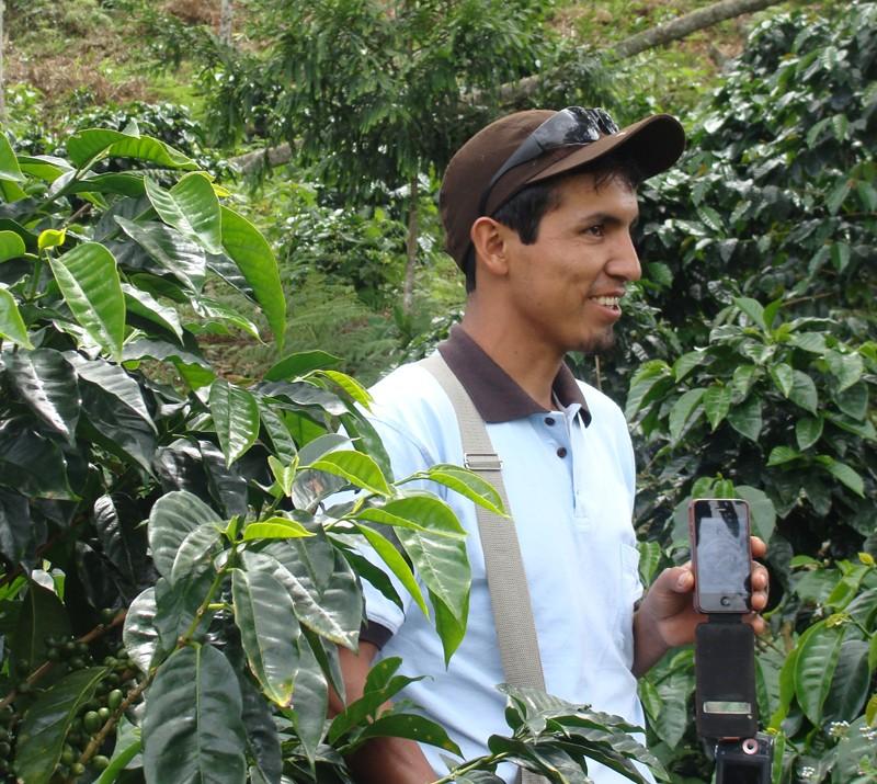 M-espresso Anbaugebiet