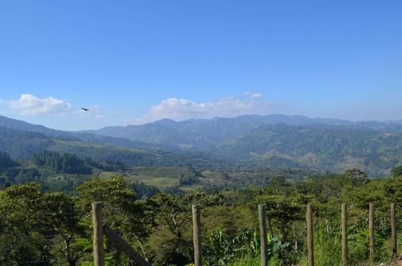 https://www.martermuehle.de/media/image/8c/dd/98/Landschaft-Guatemala-Lampocoy-KaffeeYLhzvxJdrsfky.jpg