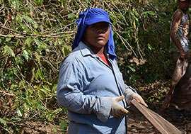 Martermuehle-Kaffeeplantage-Brasilien