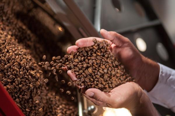 Kaffee-Bohnen-Qualitaet