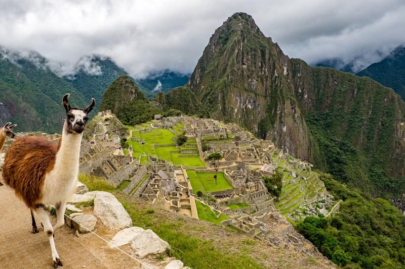 Bio Kaffee Peru online bestellen